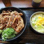 「韓丼 北名古屋店」のカルビ丼とサラダ @北名古屋市西春