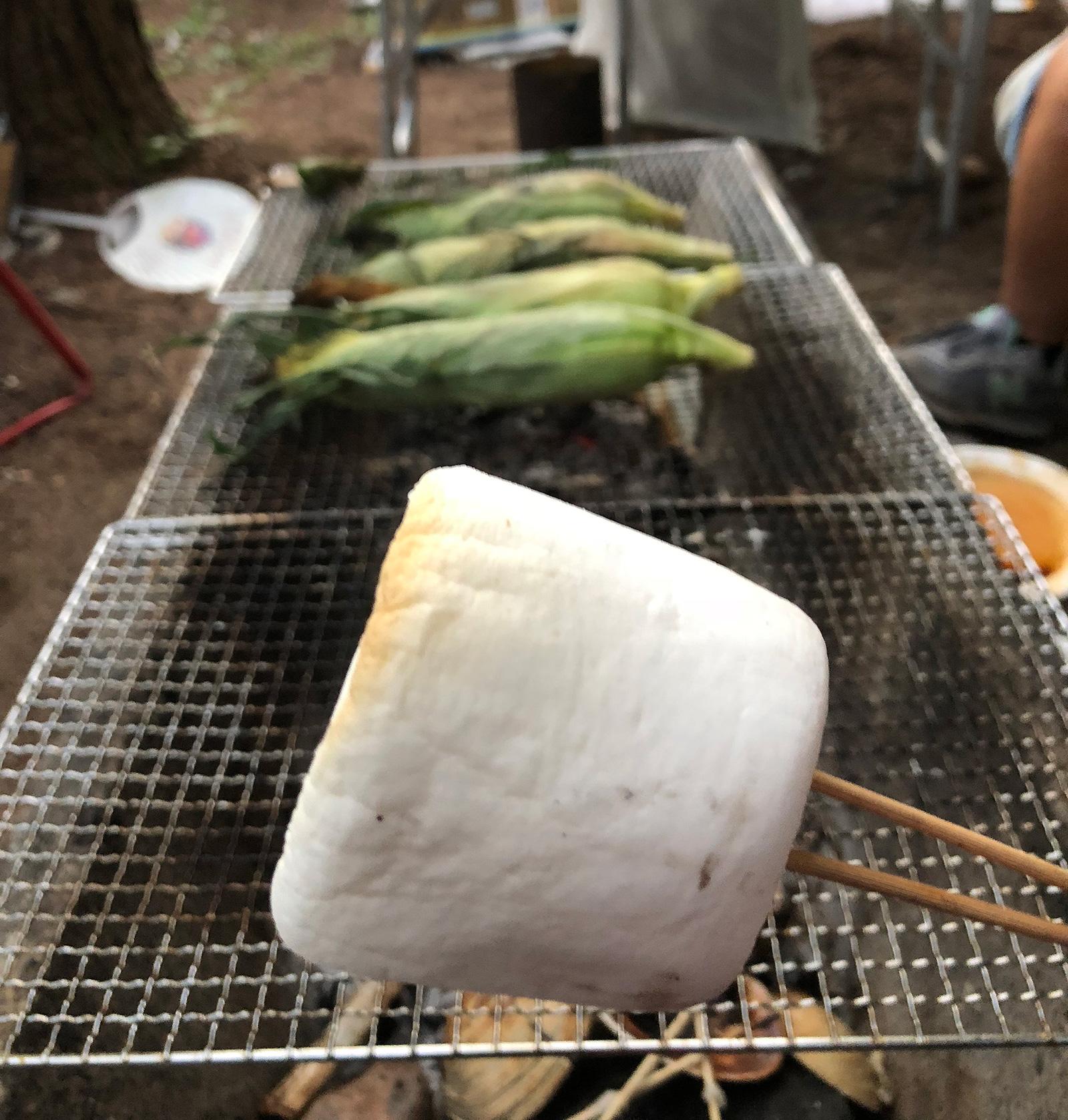 「飛騨荘川 一色の森キャンプ場」でBBQ @岐阜・荘川