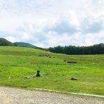 「飛騨荘川 一色の森キャンプ場」でBBQとジンギスカン  @岐阜県高山市荘川